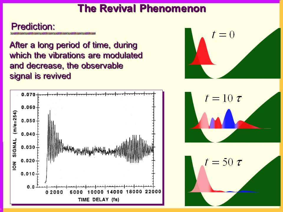 The Revival Phenomenon After a long period of time, during which the vibrations are modulated and decrease, the observable signal is revived Prediction: