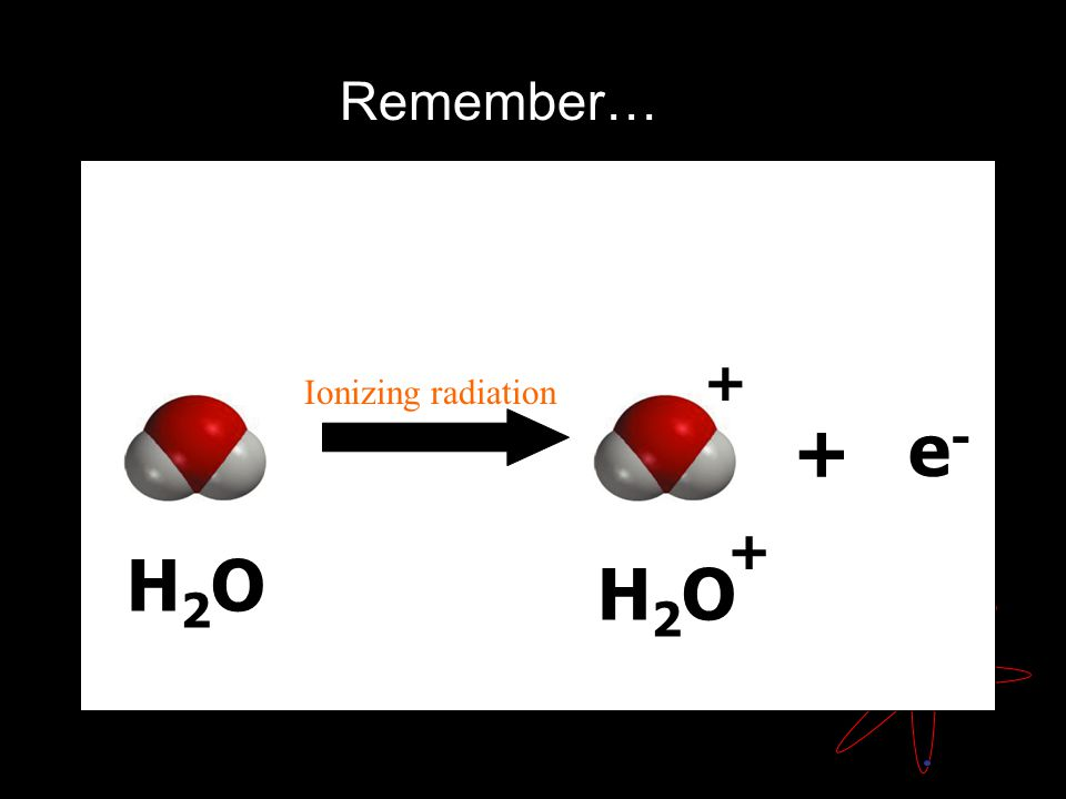 H2OH2O H2OH2O + + Ionizing radiation + e-e- Remember…