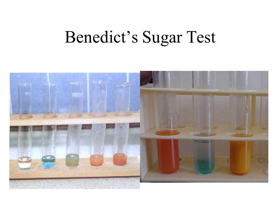 Benedict's Sugar Test