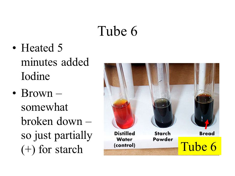 Tube 6 Heated 5 minutes added Iodine Brown – somewhat broken down – so just partially (+) for starch Tube 6