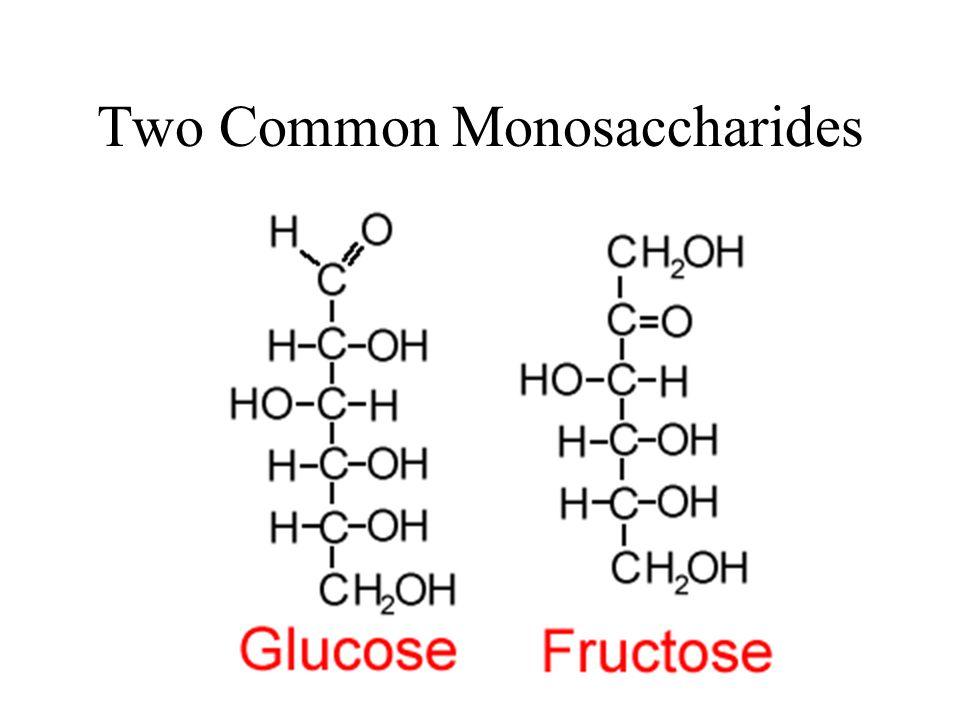 Two Common Monosaccharides