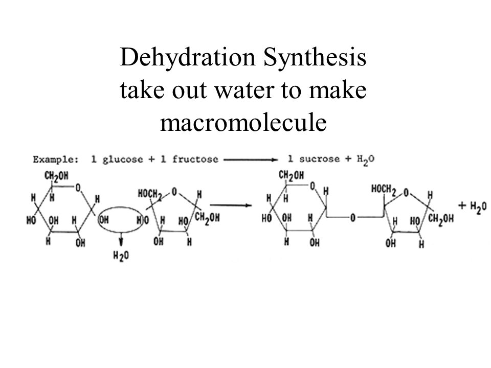 Dehydration Synthesis take out water to make macromolecule