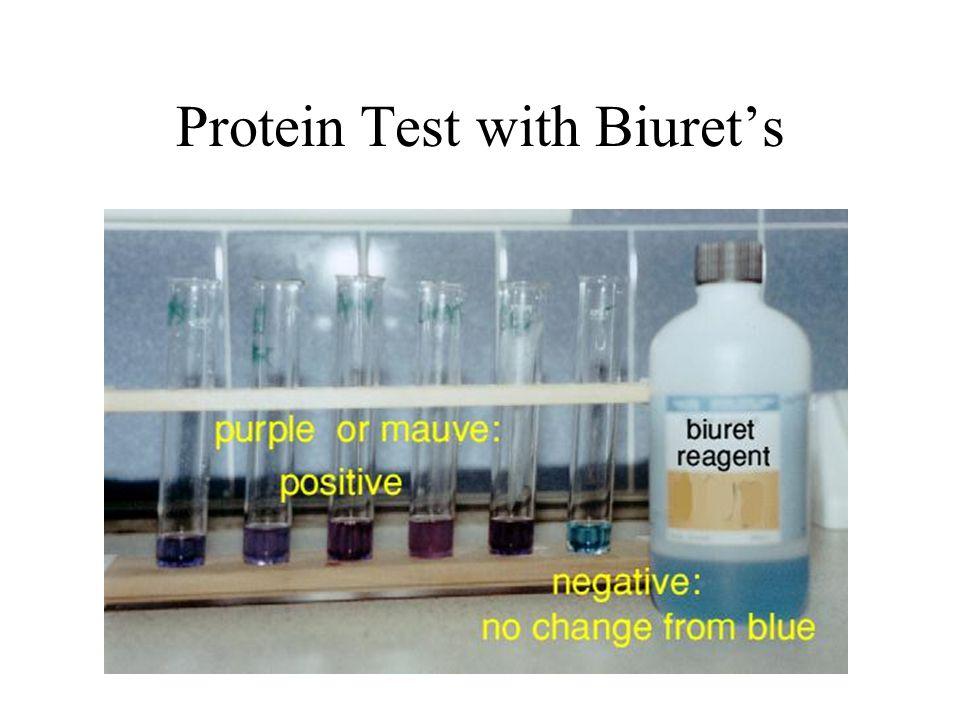 Protein Test with Biuret's