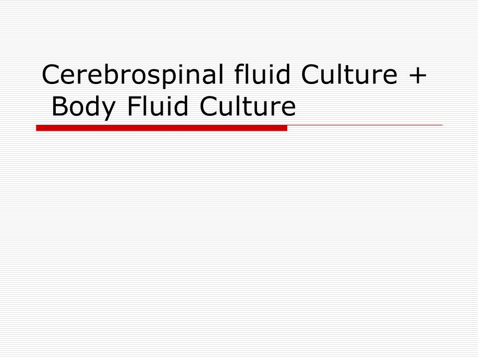 Cerebrospinal fluid Culture + Body Fluid Culture