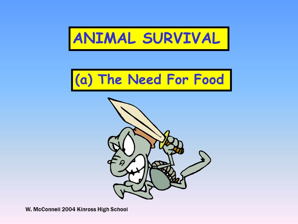 W. McConnell 2004 Kinross High School ANIMAL SURVIVAL (a) The Need For Food