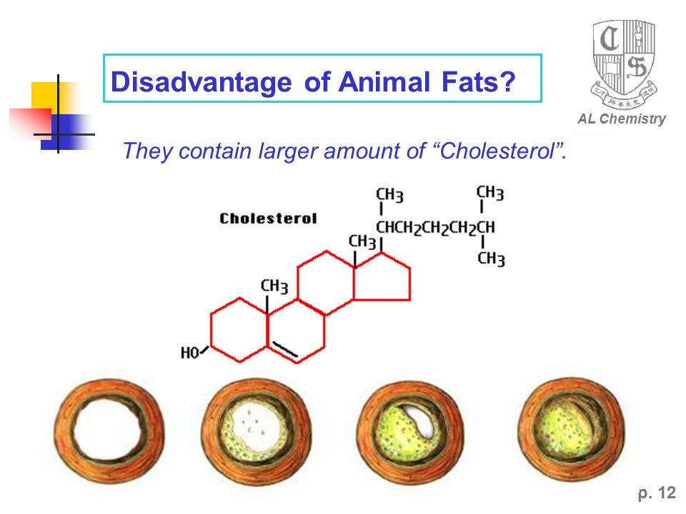 p. 12 Disadvantage of Animal Fats They contain larger amount of Cholesterol . AL Chemistry