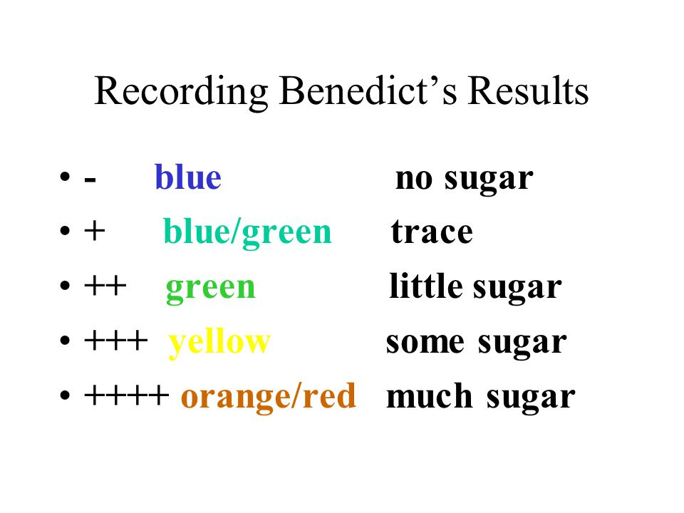 Recording Benedict's Results - blue no sugar + blue/green trace ++ green little sugar +++ yellow some sugar ++++ orange/red much sugar