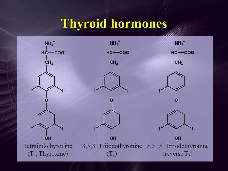Effects of thyroid hormones Calorigenic (  O 2 consumption) Growth, development, sexual maturation, CNS maturation  HR and contraction  Protein synthesis, C(H 2 O) n metabolism, lipid turnover  Sensitivity of  -adrenergic receptors to catecholamines Brain, retina, lungs, spleen, testes appear to be unaffected by thyroid hormones Calorigenic (  O 2 consumption) Growth, development, sexual maturation, CNS maturation  HR and contraction  Protein synthesis, C(H 2 O) n metabolism, lipid turnover  Sensitivity of  -adrenergic receptors to catecholamines Brain, retina, lungs, spleen, testes appear to be unaffected by thyroid hormones