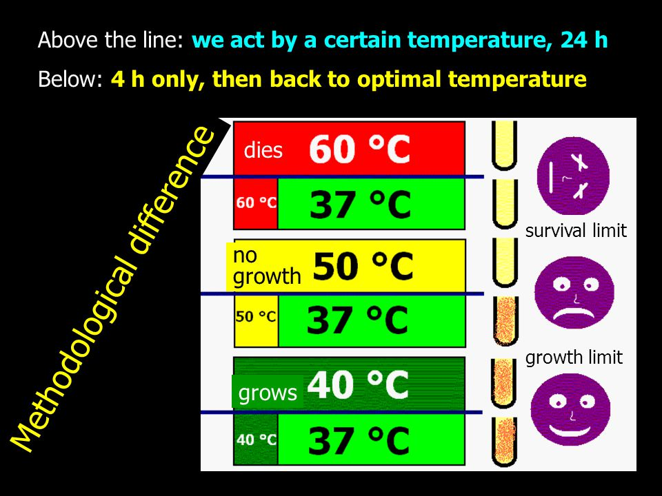 Above the line: we act by a certain temperature, 24 h Below: 4 h only, then back to optimal temperature Methodological difference dies grows no growth growth limit survival limit