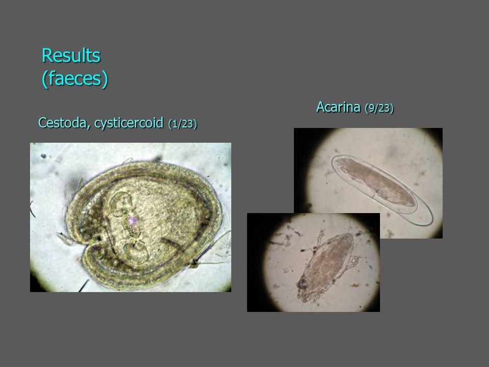 Cestoda, cysticercoid (1/23) Acarina (9/23) Results (faeces)