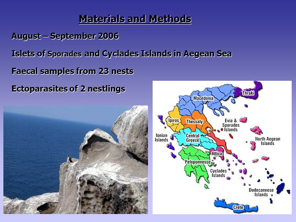Materials and Methods August – September 2006 Islets of Sporades and Cyclades Islands in Aegean Sea Faecal samples from 23 nests Ectoparasites of 2 nestlings