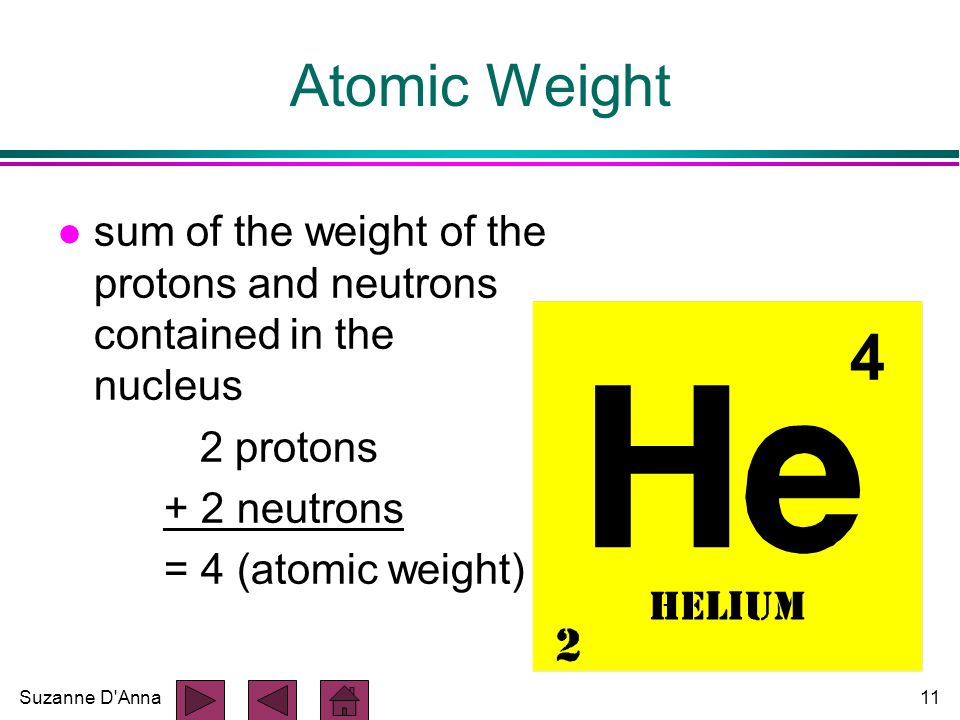 Suzanne D Anna11 Atomic Weight l sum of the weight of the protons and neutrons contained in the nucleus 2 protons + 2 neutrons = 4 (atomic weight) 4
