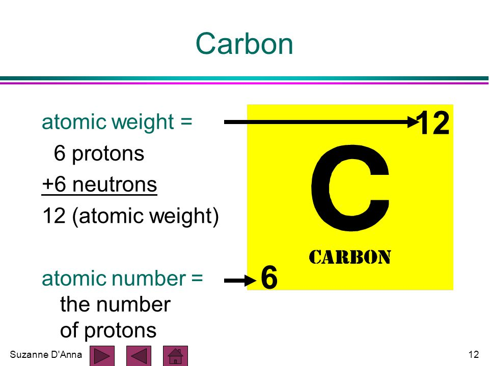 Suzanne D Anna12 atomic weight = 6 protons +6 neutrons 12 (atomic weight) atomic number = the number of protons Carbon 12 6