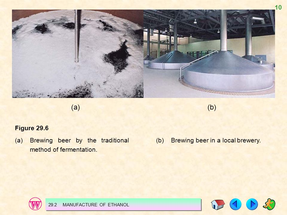 10 (a)(b) Figure 29.6 (a)Brewing beer by the traditional method of fermentation. 29.2 MANUFACTURE OF ETHANOL (b)Brewing beer in a local brewery.