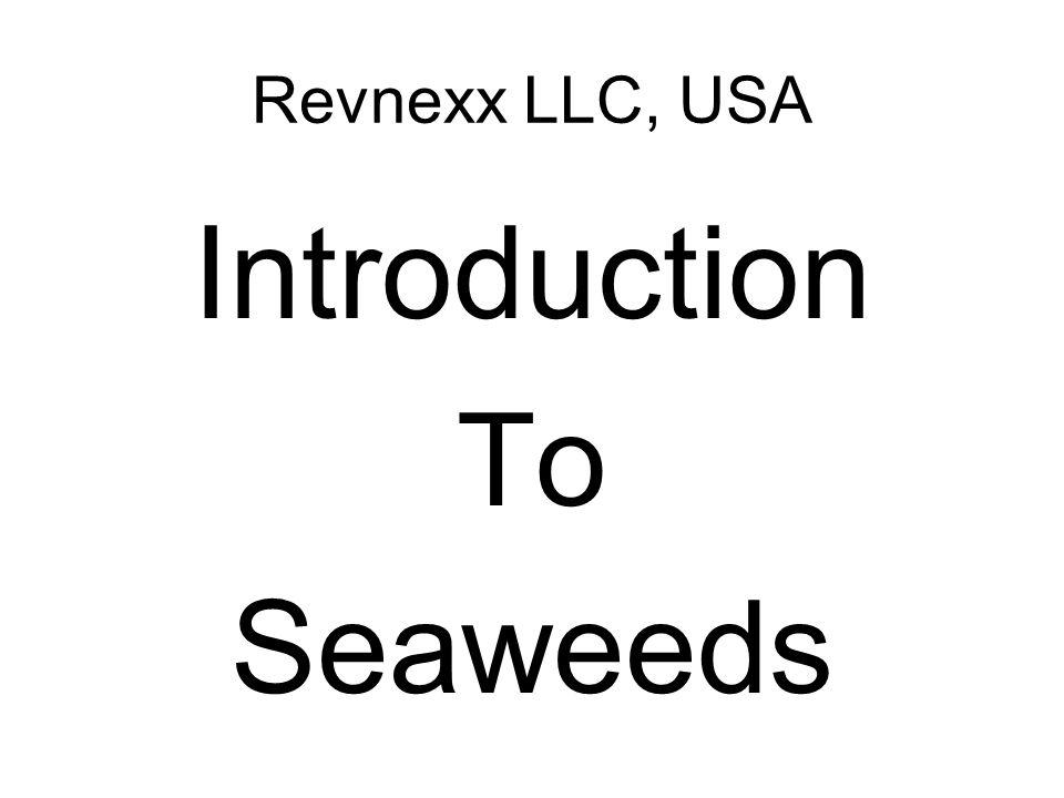 Revnexx LLC, USA Introduction To Seaweeds