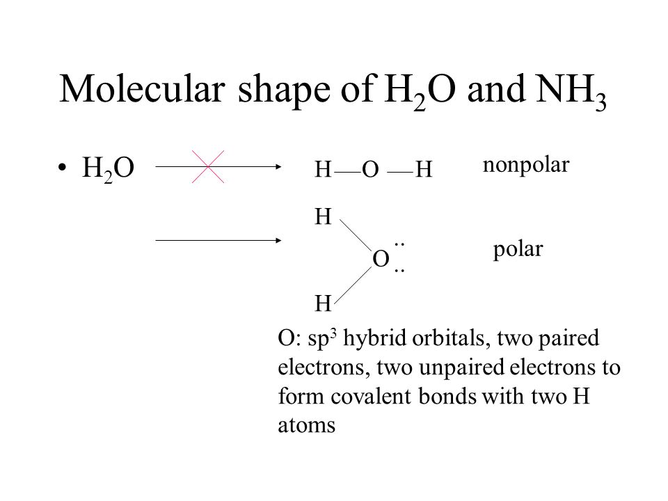 Molecular shape of H 2 O and NH 3 H 2 O H O H nonpolar HHHH O..