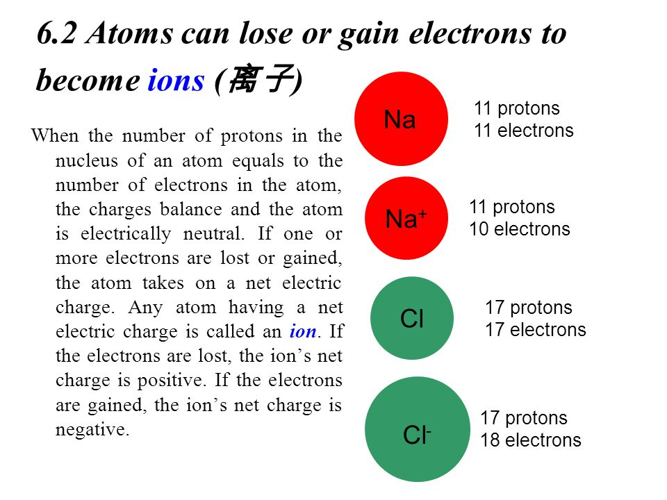 6.2 Atoms can lose or gain electrons to become ions ( 离子 ) When the number of protons in the nucleus of an atom equals to the number of electrons in the atom, the charges balance and the atom is electrically neutral.