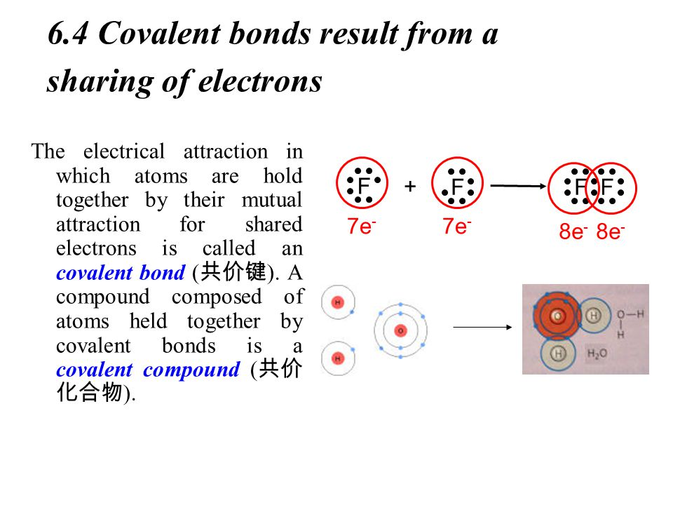6.4 Covalent bonds result from a sharing of electrons The electrical attraction in which atoms are hold together by their mutual attraction for shared electrons is called an covalent bond ( 共价键 ).