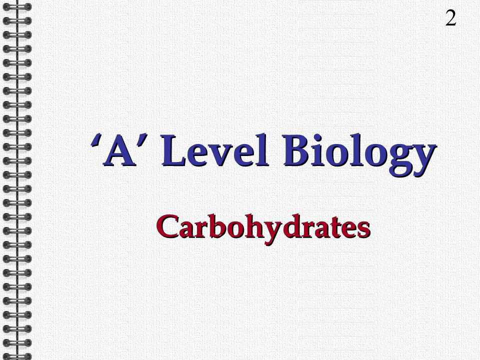 2 'A' Level Biology Carbohydrates