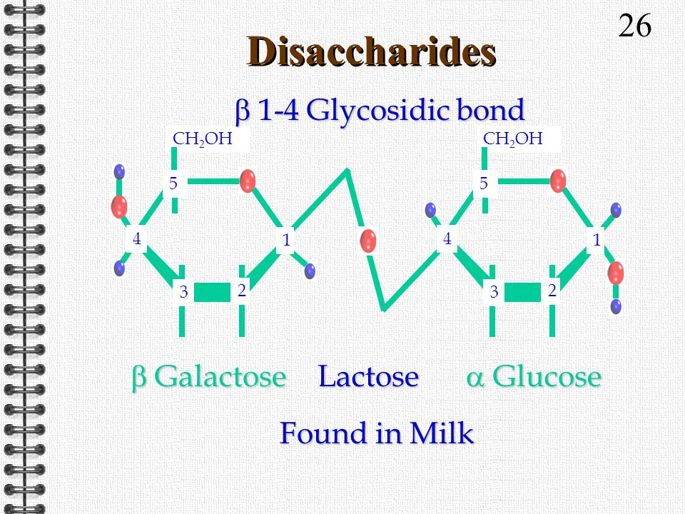 26 Disaccharides 1 4 CH 2 OH 3 2 4 5 3 2 1 5 1 4 Lactose Found in Milk  Galactose  Glucose  1-4 Glycosidic bond