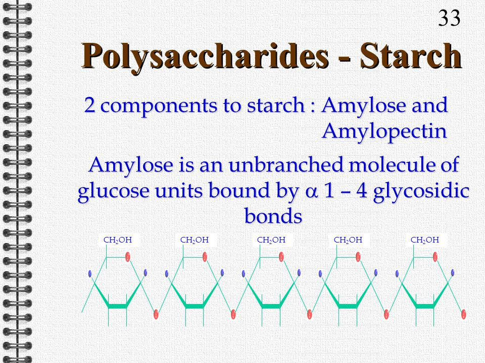 33 Polysaccharides - Starch CH 2 OH 2 components to starch : Amylose and Amylopectin Amylose is an unbranched molecule of glucose units bound by 1 – 4 glycosidic bonds