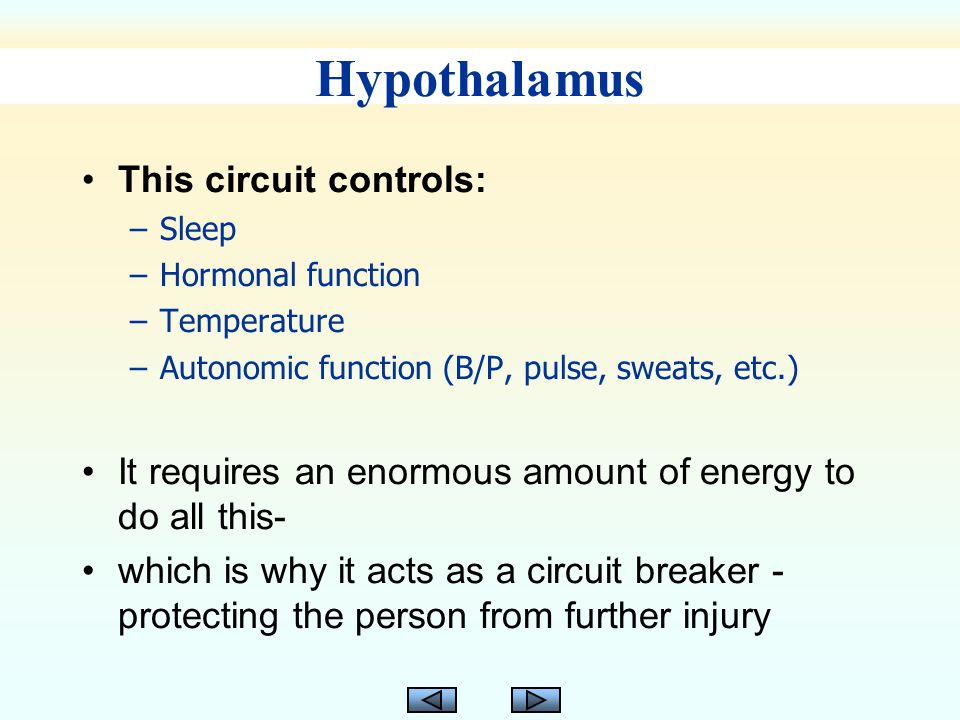Hypothalamus This circuit controls: –Sleep –Hormonal function –Temperature –Autonomic function (B/P, pulse, sweats, etc.) It requires an enormous amount of energy to do all this- which is why it acts as a circuit breaker - protecting the person from further injury