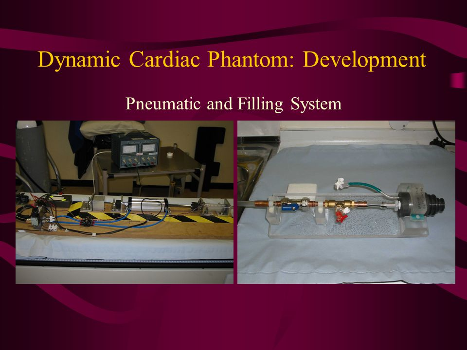 Dynamic Cardiac Phantom: Development Pneumatic and Filling System