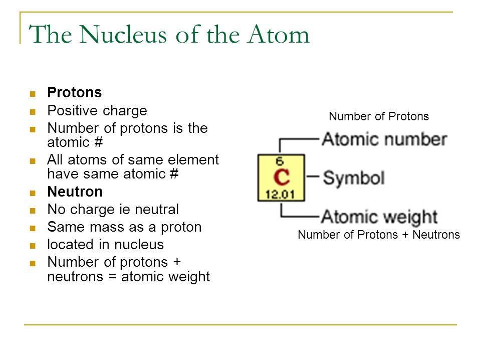 The Nucleus of the Atom Protons Positive charge Number of protons is the atomic # All atoms of same element have same atomic # Neutron No charge ie neutral Same mass as a proton located in nucleus Number of protons + neutrons = atomic weight Number of Protons Number of Protons + Neutrons