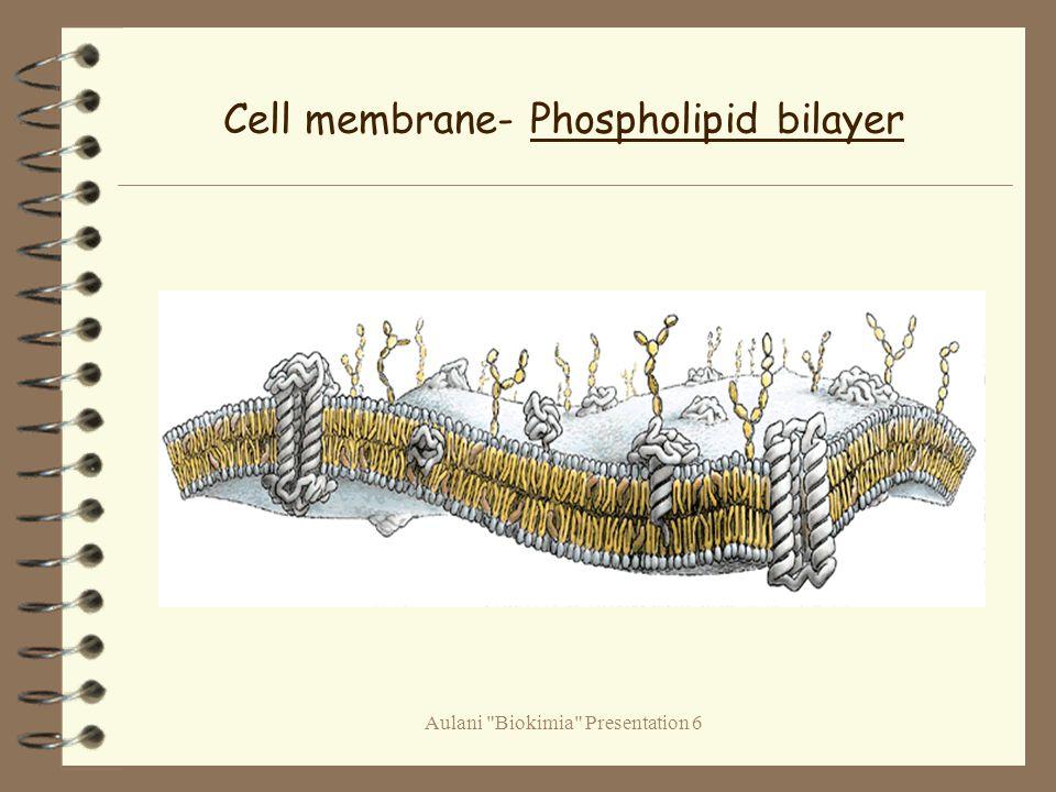 Aulani Biokimia Presentation 6 Cell membrane- Phospholipid bilayer