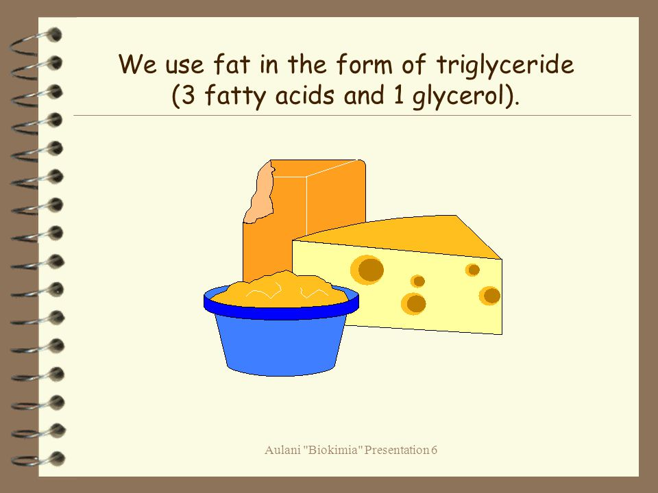 Aulani Biokimia Presentation 6 We use fat in the form of triglyceride (3 fatty acids and 1 glycerol).