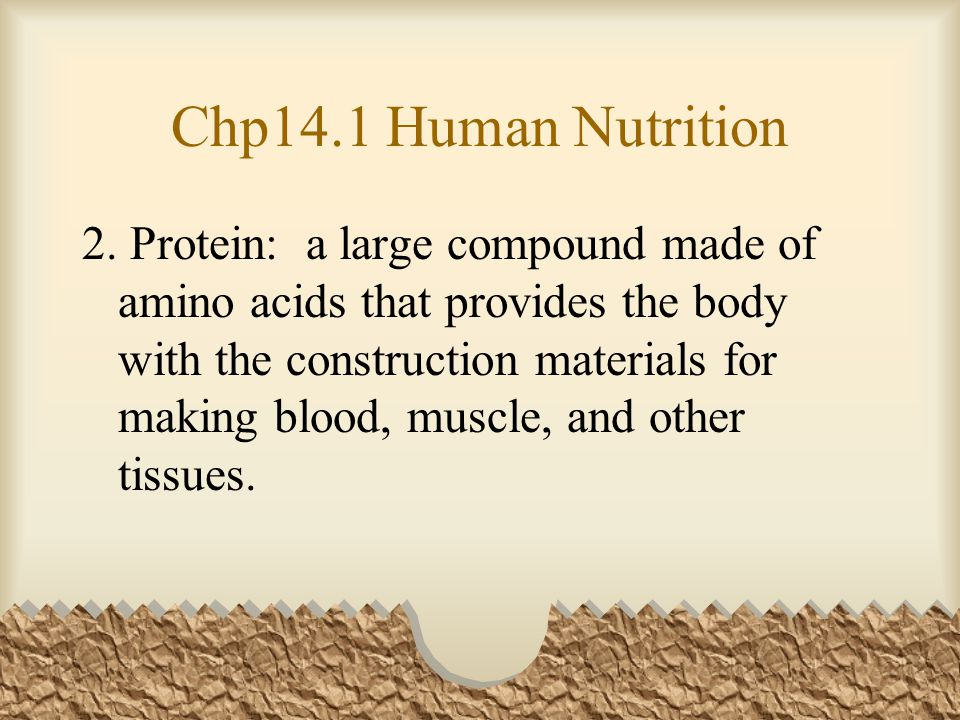 Chp14.1 Human Nutrition 2. Protein: a large compound made of amino acids that provides the body with the construction materials for making blood, musc