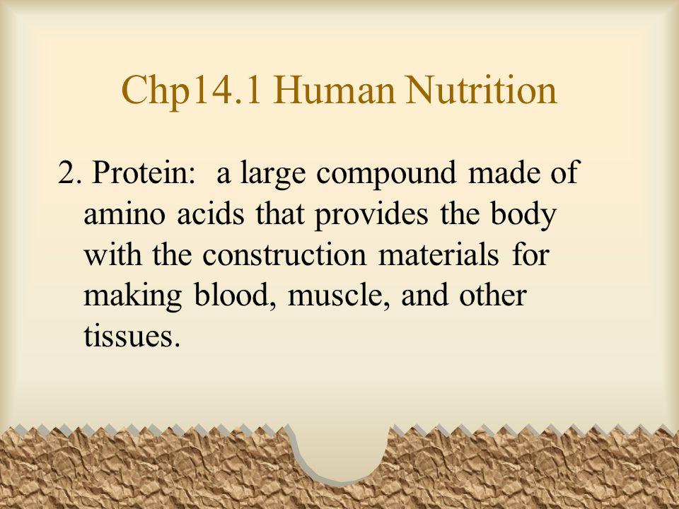 Chp14.1 Human Nutrition 2.