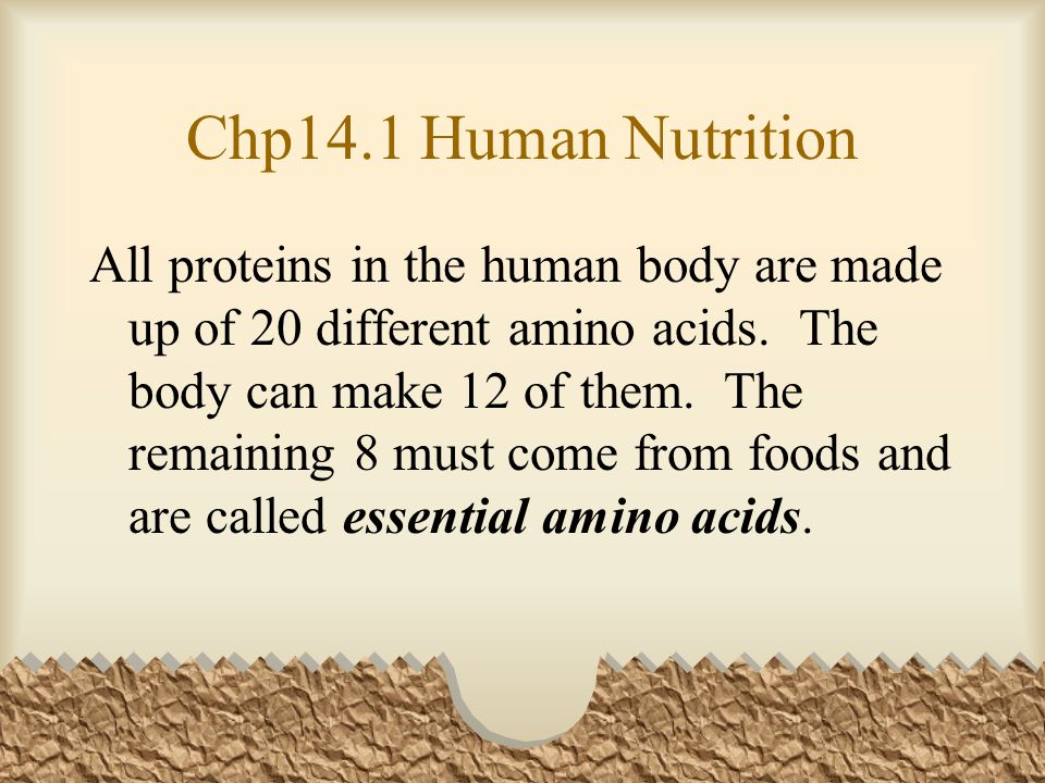 Chp14.1 Human Nutrition All proteins in the human body are made up of 20 different amino acids.