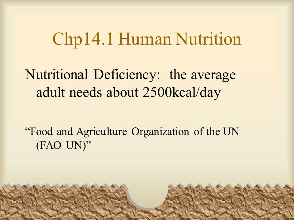 Chp14.1 Human Nutrition Nutritional Deficiency: the average adult needs about 2500kcal/day Food and Agriculture Organization of the UN (FAO UN)