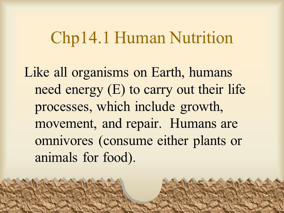 Chp14.1 Human Nutrition Nutrients: 1) Macronutrients (macro=big)provide the body E.