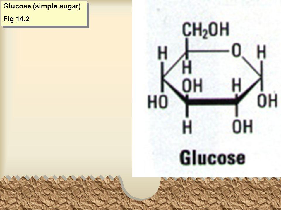 Fructose (simple sugar) Fig 14.2 Fructose (simple sugar) Fig 14.2