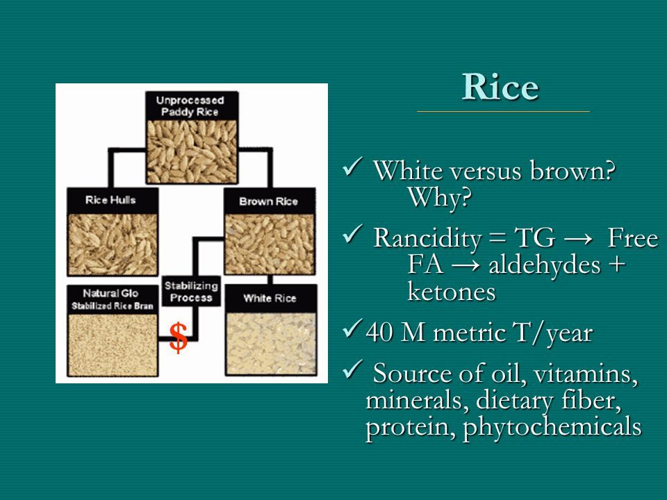 Rice White versus brown? Why? White versus brown? Why? Rancidity = TG → Free FA → aldehydes + ketones Rancidity = TG → Free FA → aldehydes + ketones 4