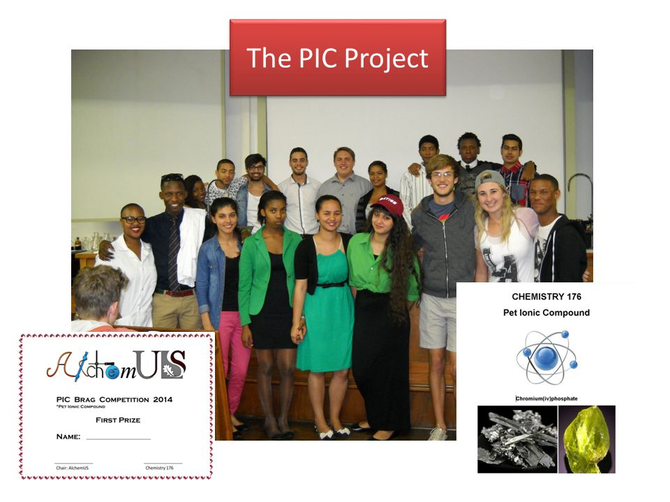 The PIC Project