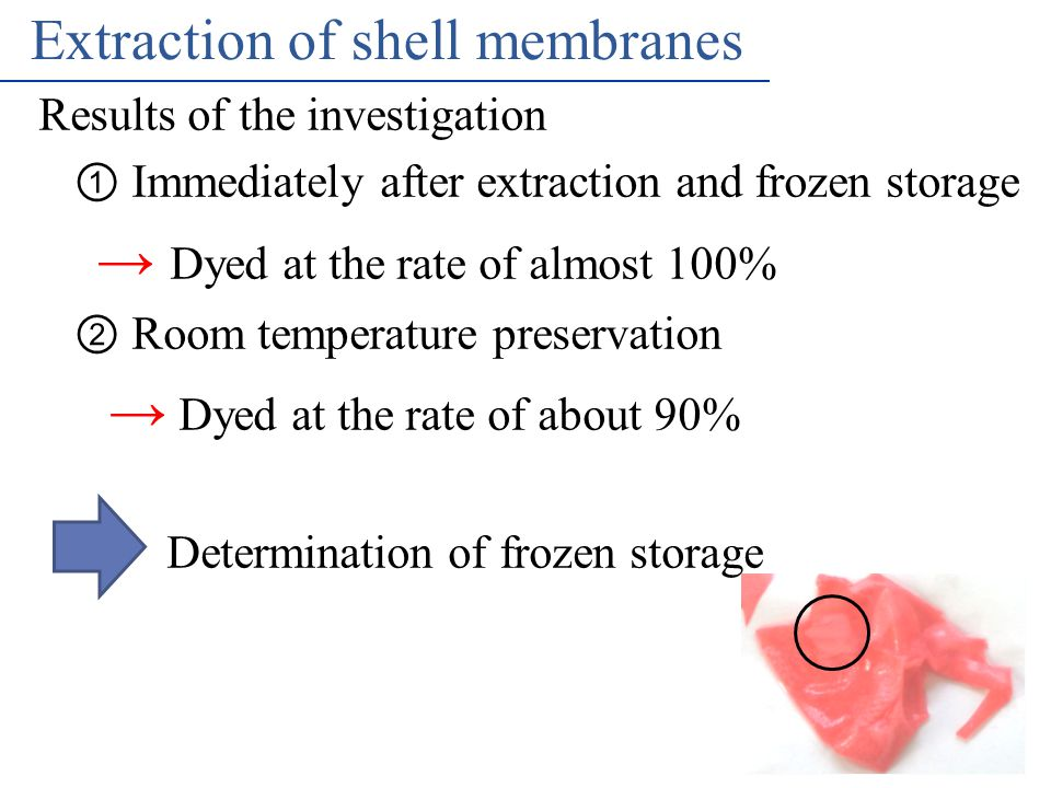 MNCT Nakagawa Lab's Extraction of shell membranes Results of the investigation ① Immediately after extraction and frozen storage → Dyed at the rate of