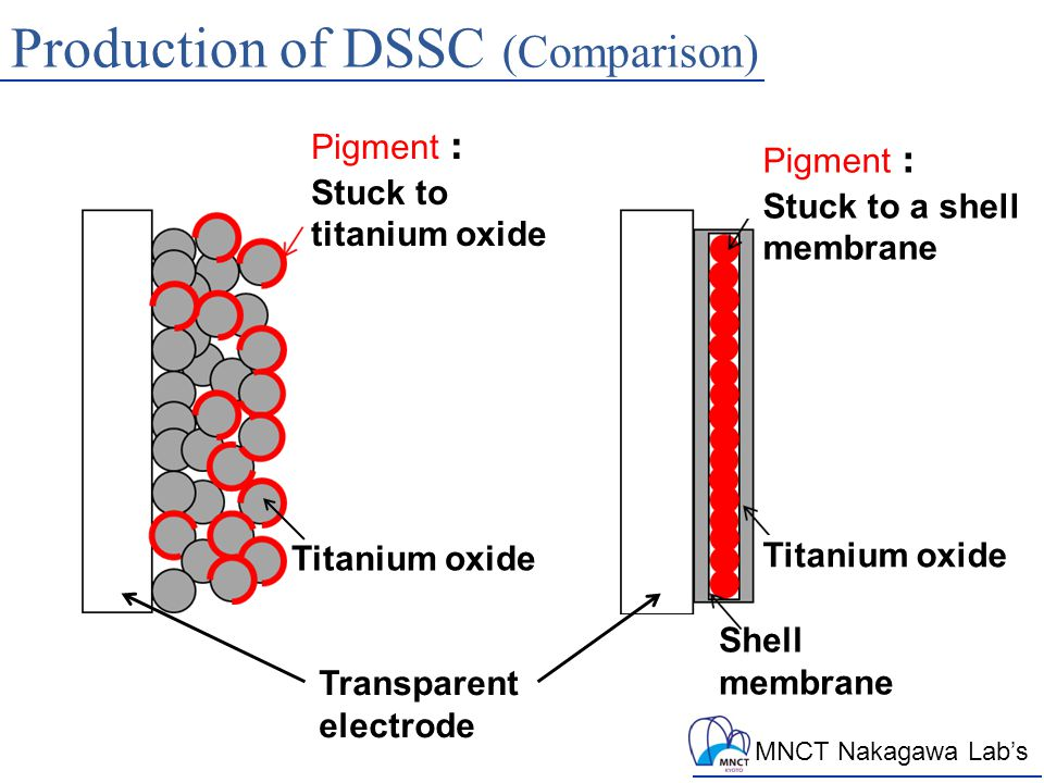 MNCT Nakagawa Lab's Production of DSSC (Comparison) Pigment : Stuck to titanium oxide Pigment : Stuck to a shell membrane Transparent electrode Titanium oxide Shell membrane