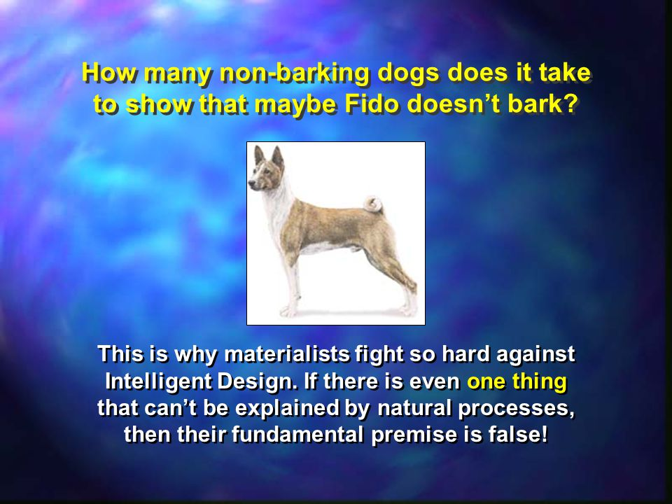 How many non-barking dogs does it take to show that maybe Fido doesn't bark.