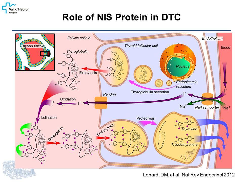 Lonard, DM, et al. Nat Rev Endocrinol 2012 Role of NIS Protein in DTC