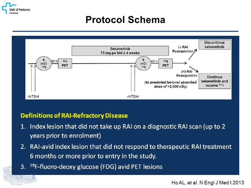 Protocol Schema Ho AL, et al. N Engl J Med t 2013