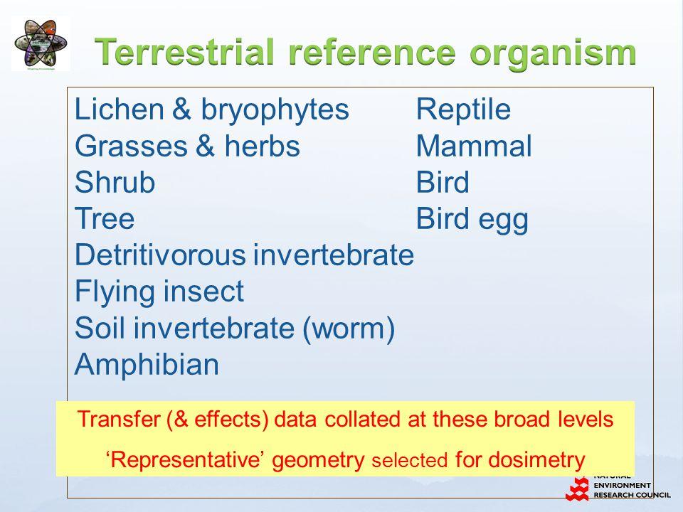Lichen & bryophytesReptile Grasses & herbsMammal ShrubBird TreeBird egg Detritivorous invertebrate Flying insect Soil invertebrate (worm) Amphibian Transfer (& effects) data collated at these broad levels 'Representative' geometry selected for dosimetry