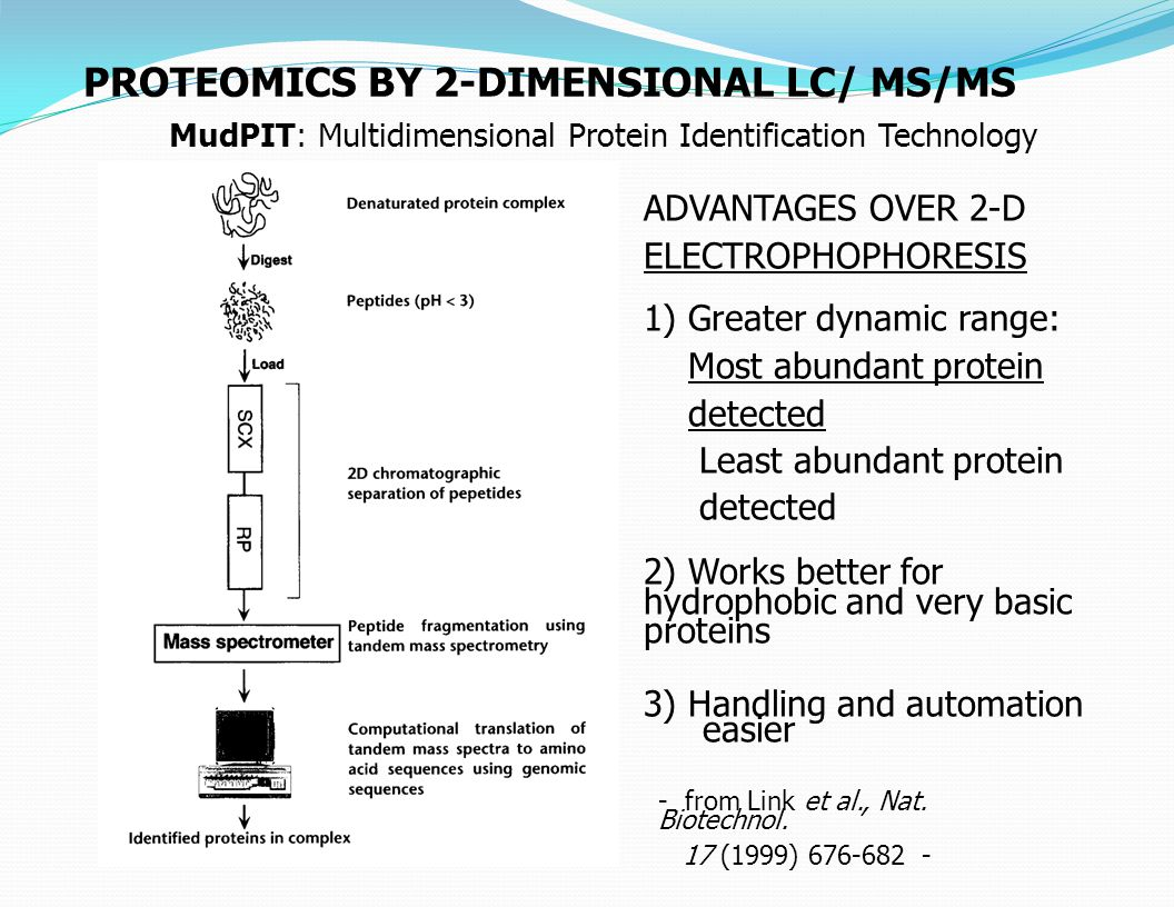 PROTEOMICS BY 2-DIMENSIONAL LC/ MS/MS ADVANTAGES OVER 2-D ELECTROPHOPHORESIS 1) Greater dynamic range: Most abundant protein detected Least abundant protein detected 2) Works better for hydrophobic and very basic proteins 3) Handling and automation easier - from Link et al., Nat.
