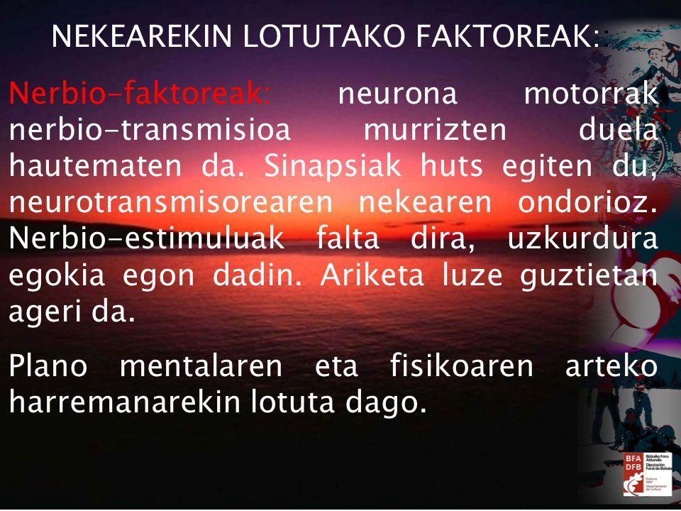 Nerbio-faktoreak: neurona motorrak nerbio-transmisioa murrizten duela hautematen da.