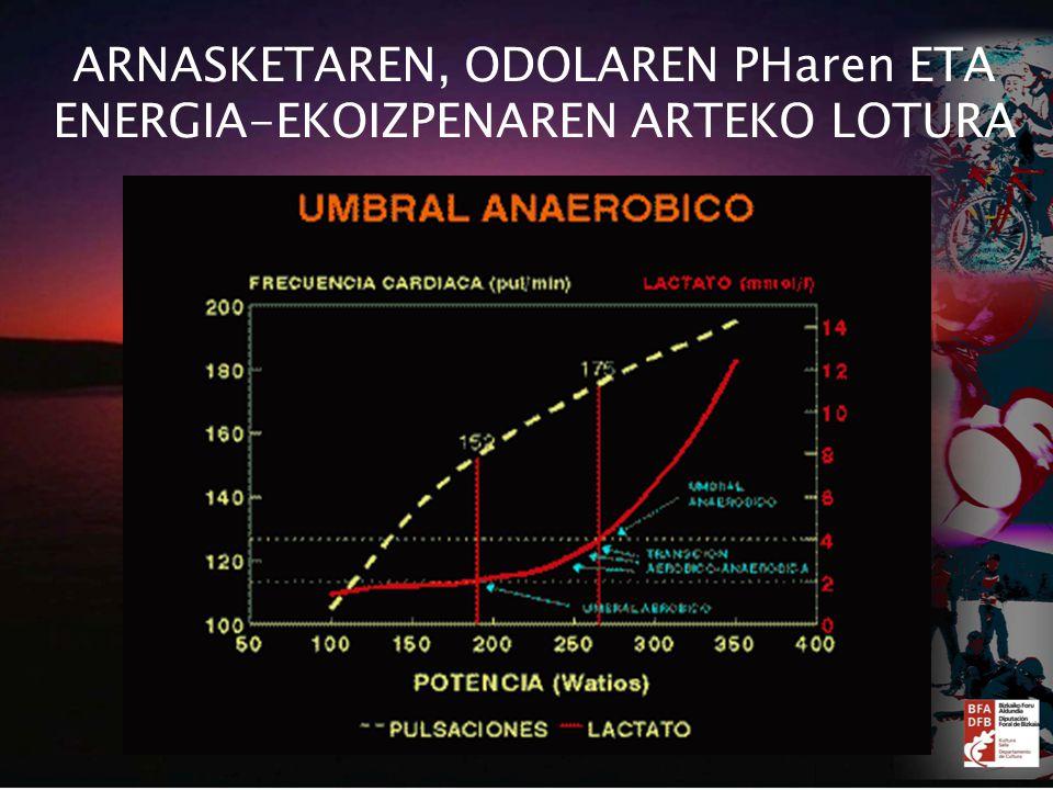 ARNASKETAREN, ODOLAREN PHaren ETA ENERGIA-EKOIZPENAREN ARTEKO LOTURA