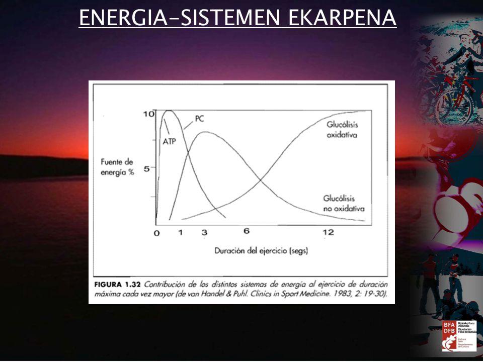 ENERGIA-SISTEMEN EKARPENA