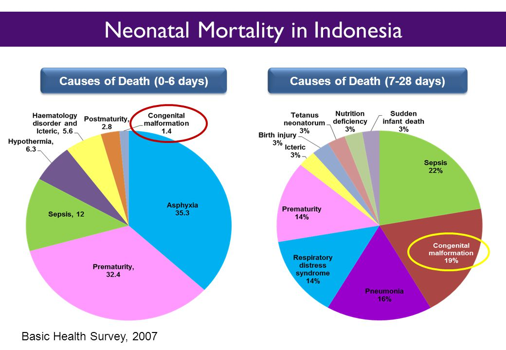 Neonatal Mortality in Indonesia Causes of Death (0-6 days)Causes of Death (7-28 days) Basic Health Survey, 2007
