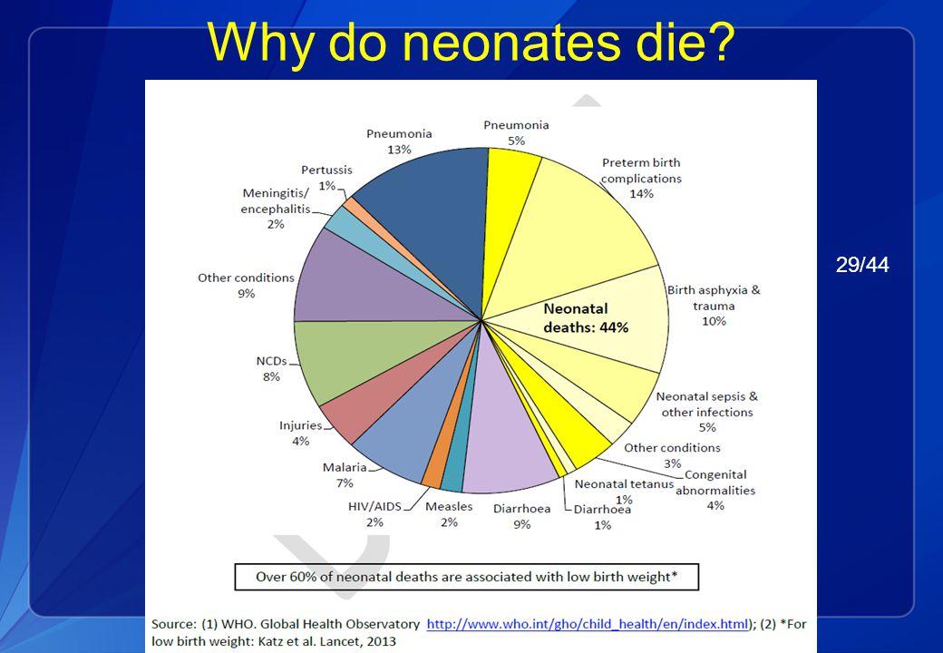 Why do neonates die? 29/44